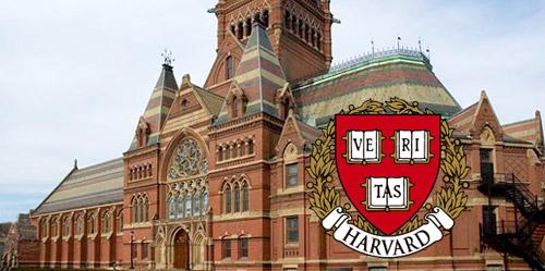 Lisa Peyton Harvard Tries Teaching the Language of Business with ...